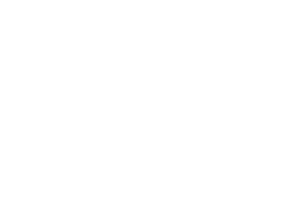 The Joie Society
